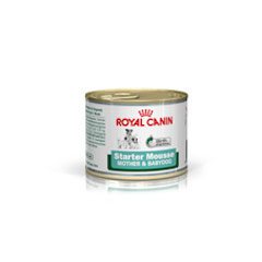 Royal Canin Starter Puppy Mousse 12x195g
